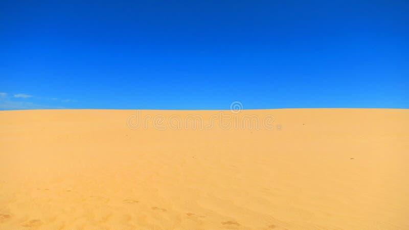 Woestijn in Australië stock foto's