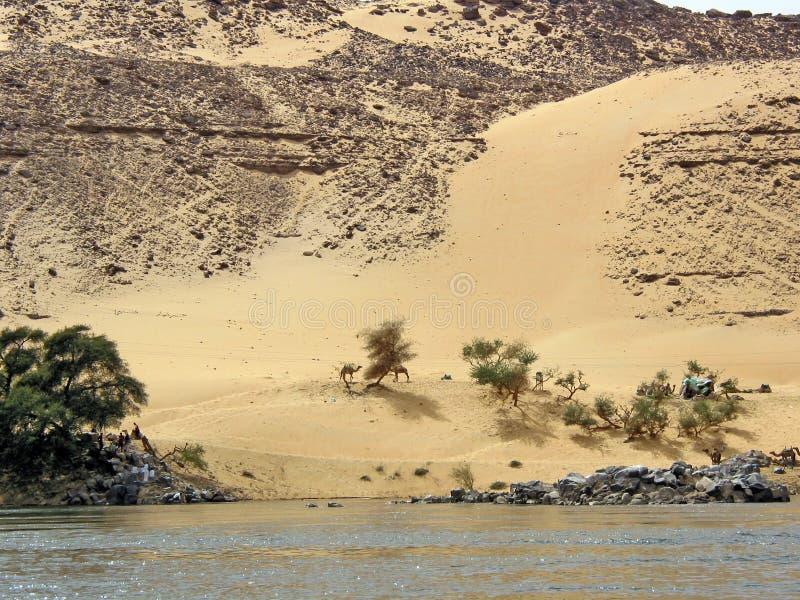 Woestijn bij de riviernul royalty-vrije stock fotografie