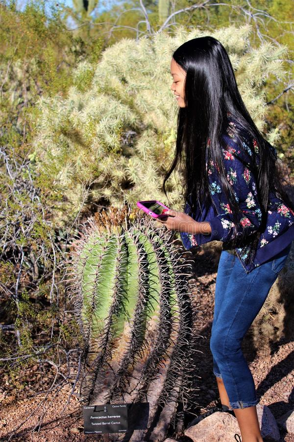 Woestijn Botanische Tuin Phoenix Arizona royalty-vrije stock fotografie