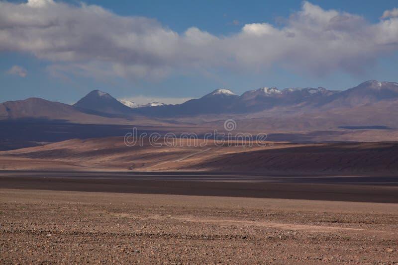 Woestijn Chili royalty-vrije stock foto