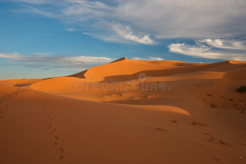 Woestijn de Sahara royalty-vrije stock foto