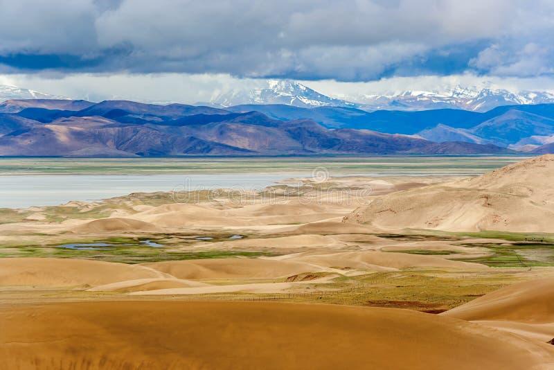 Woestijn dichtbij het meer onder sneeuwberg stock foto