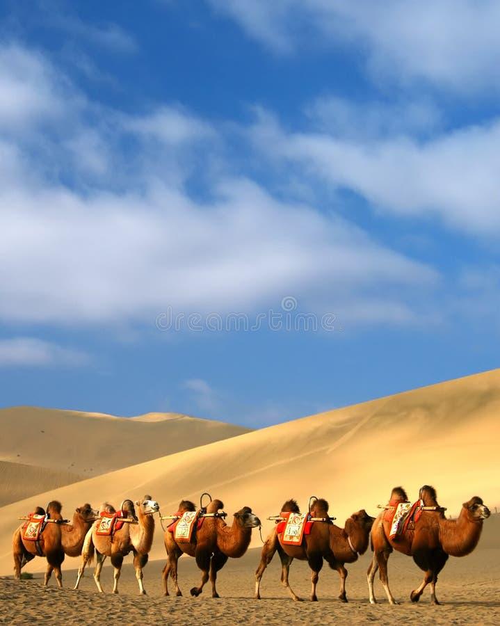 Woestijn, Dun Huang, China stock foto's