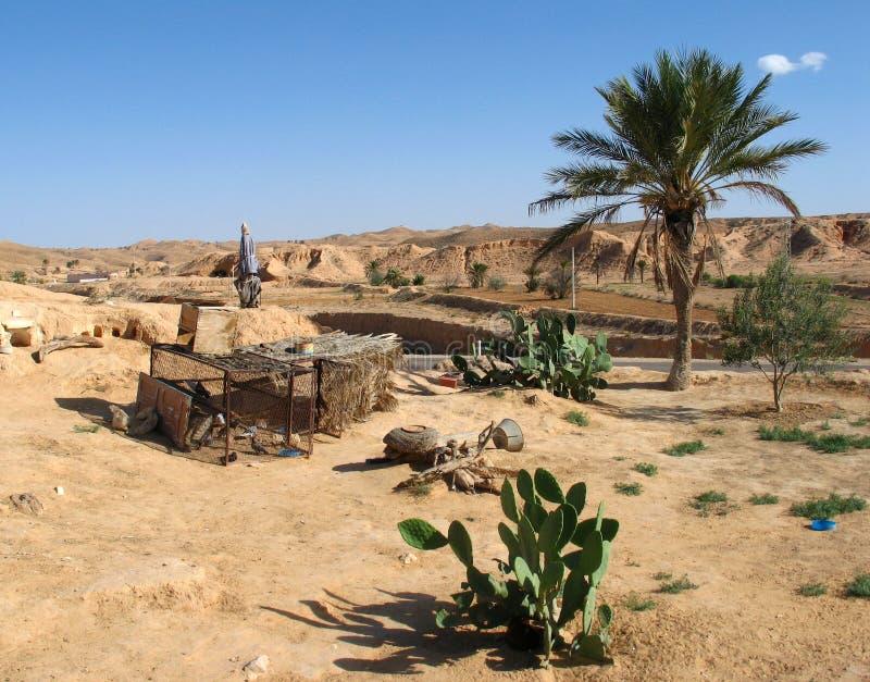 Woestijn en bergen stock foto