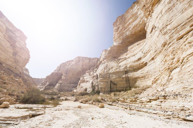 Woestijn in Israël bij zonsopgang royalty-vrije stock afbeelding