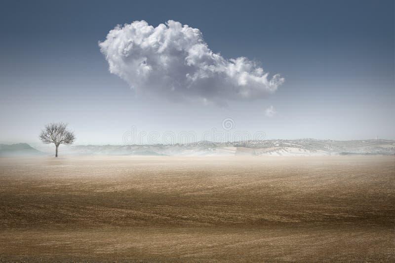 Woestijn landascape stock foto's