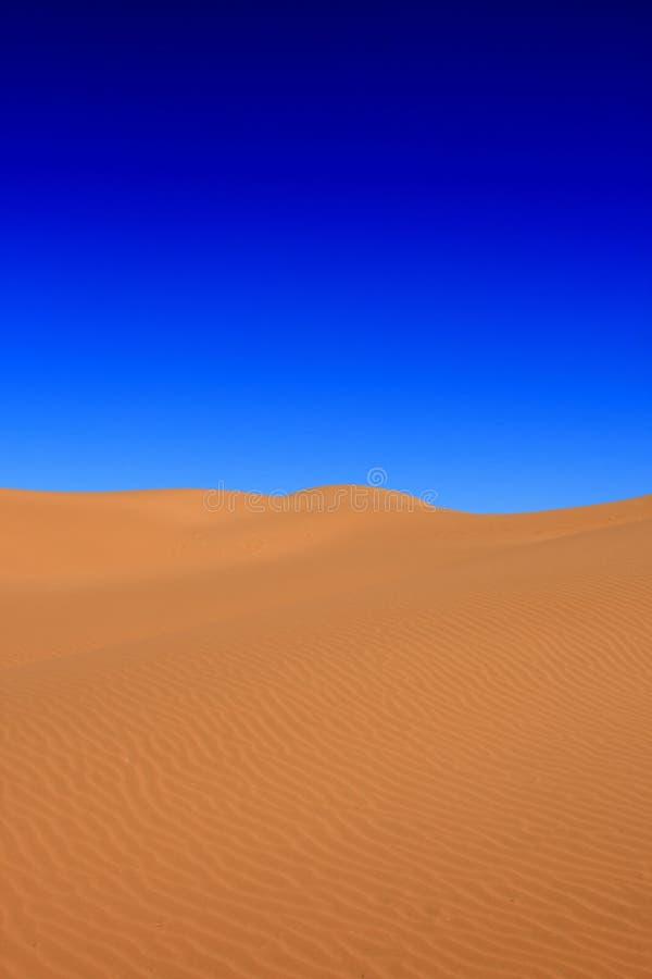 Woestijn met een blauwe hemel stock afbeelding