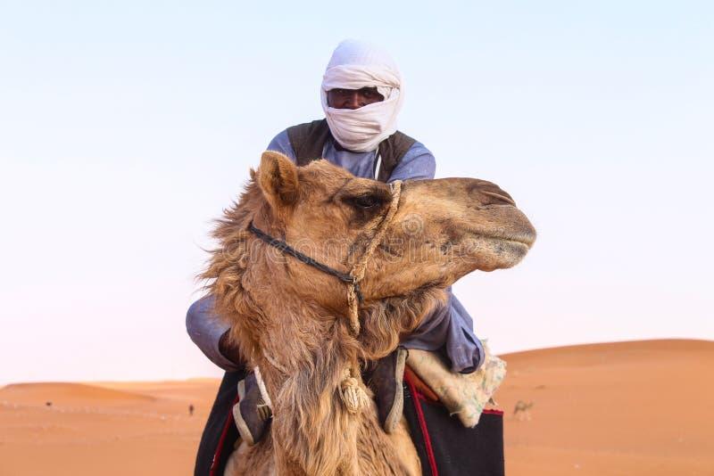 Woestijn met sommige kamelen royalty-vrije stock afbeeldingen