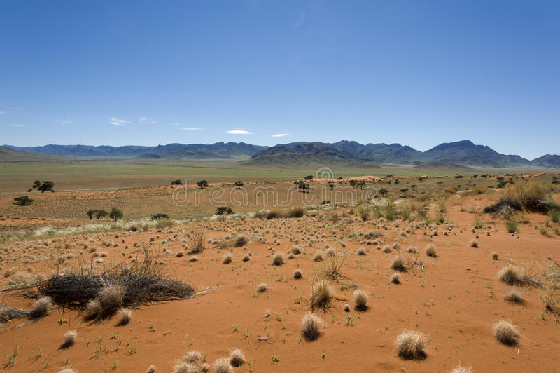 Woestijn Namibië stock afbeelding