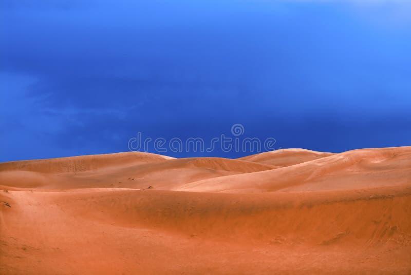 Woestijn vóór een regen royalty-vrije stock afbeelding
