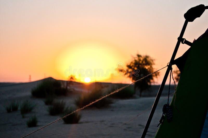 Woestijn van Al Qudra Lake, Verenigde Arabische Emiraten royalty-vrije stock afbeeldingen