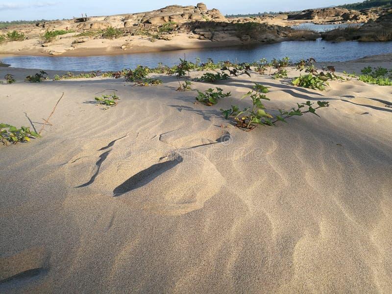 Woestijn van ubonratchathani Thailand & x28; Sam Pan Bok & x29; royalty-vrije stock foto