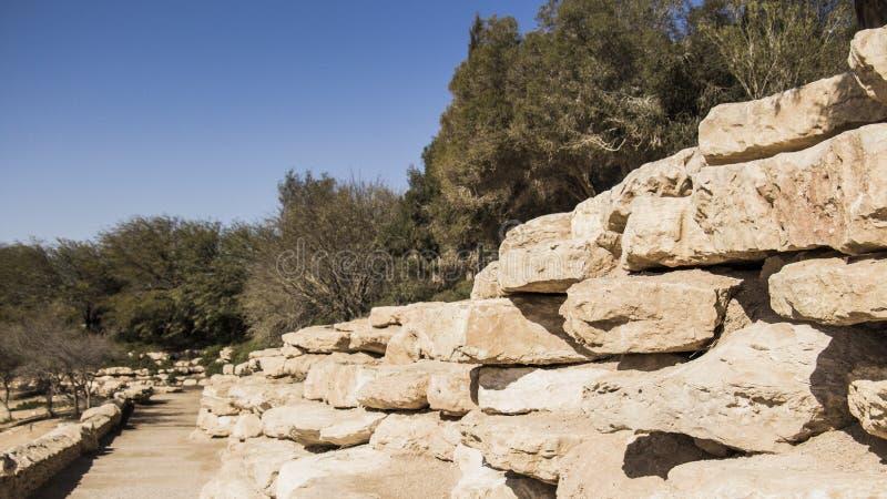 Woestijn Vibes tijdens de Israëlische Winter royalty-vrije stock afbeelding