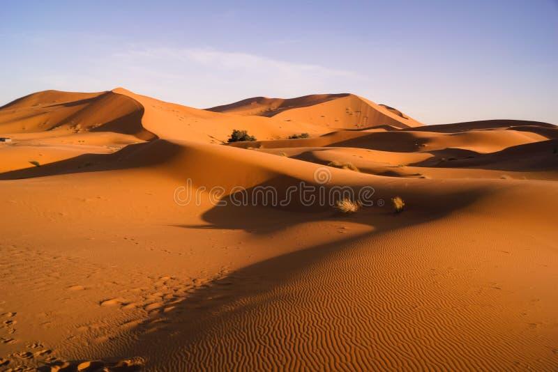 Woestijnduinen de Sahara stock afbeelding