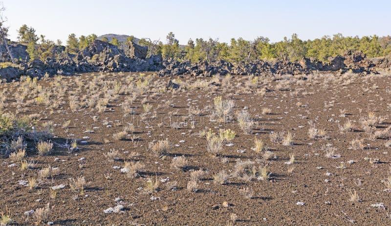Download Woestijngrassen Op Een Vulkanisch Landschap Stock Afbeelding - Afbeelding bestaande uit kraters, onvruchtbaar: 54092273