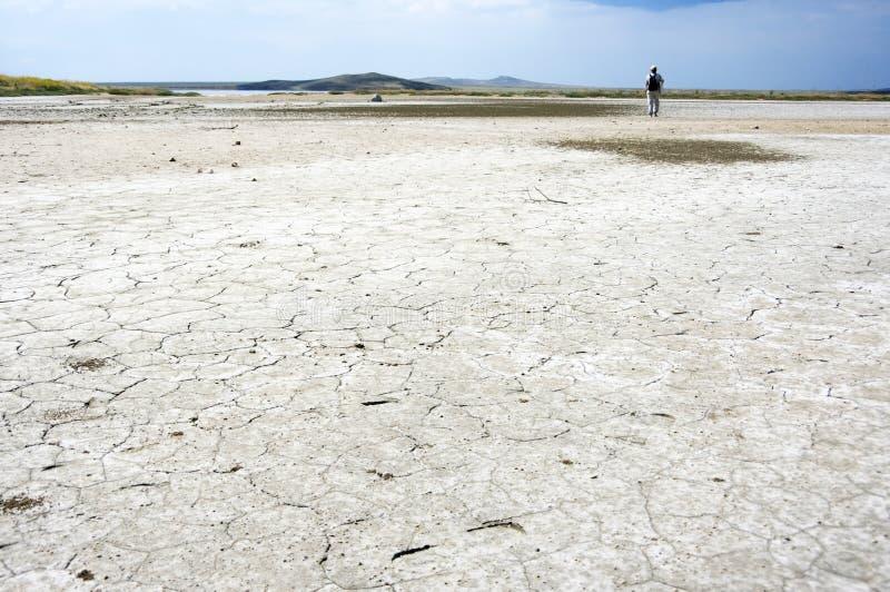 Woestijnland stock foto