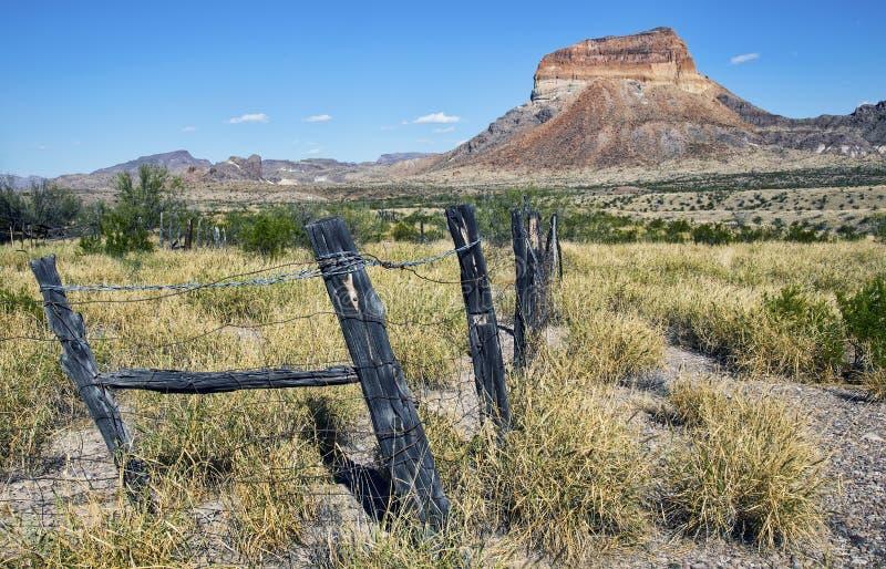 Woestijnlandschap die Cerro Castellan berg kenmerken stock foto's