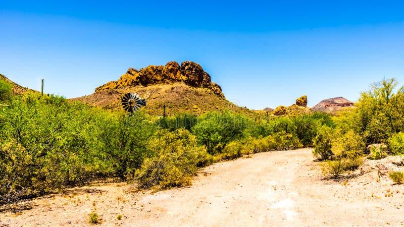 Woestijnlandschap en ruwe Bergen in het Nationale Bos van Tonto in Arizona, de V.S. royalty-vrije stock afbeeldingen