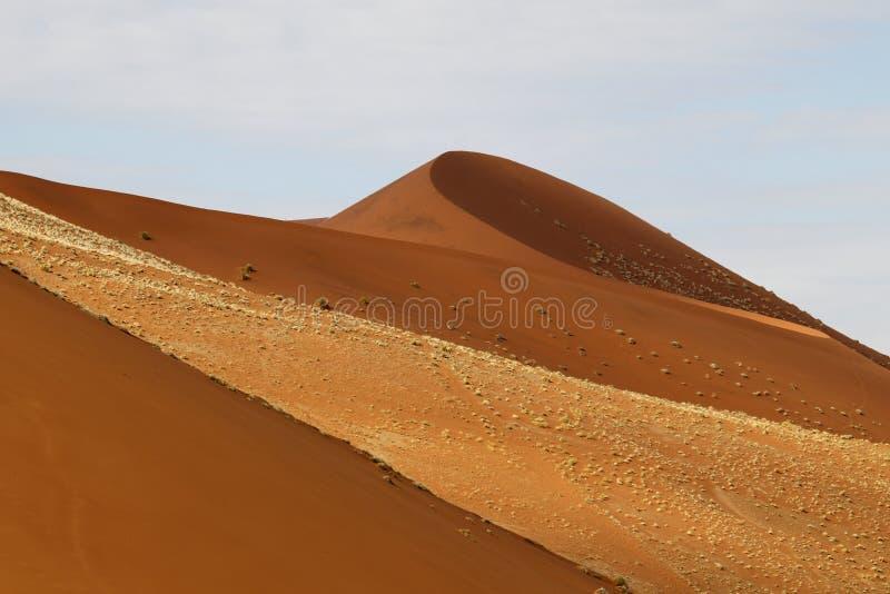 Woestijnlandschap, Sossusvlei, Namibië royalty-vrije stock foto