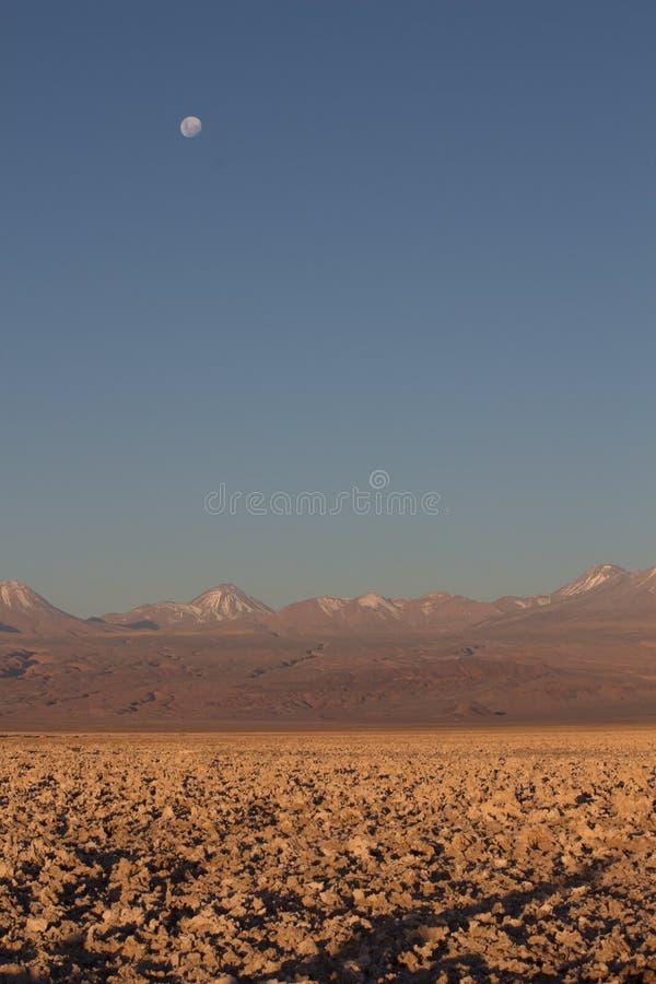 Woestijnmaan stock foto