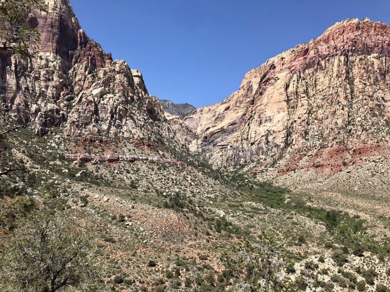 Woestijnmeningen, het Rode Gebied van het Rotsbehoud, Nevada, de V.S. stock fotografie