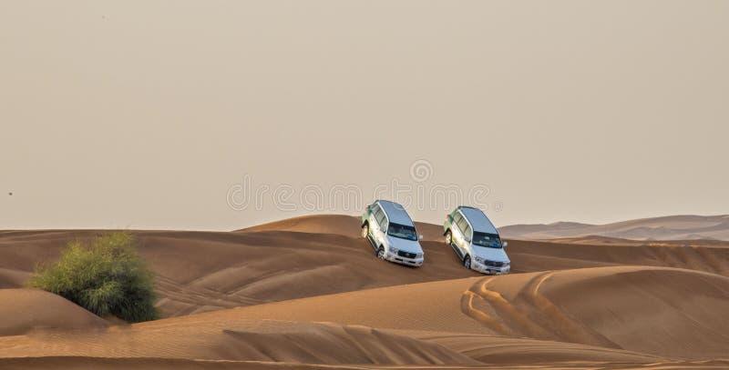 Woestijnsafari in Doubai de V.A.E royalty-vrije stock fotografie
