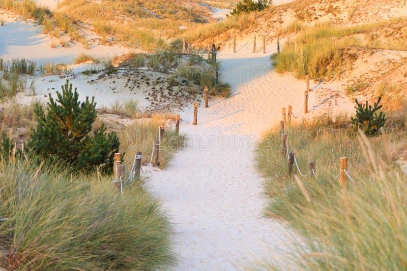 Woestijnweg in Czo?pino-duinen stock fotografie