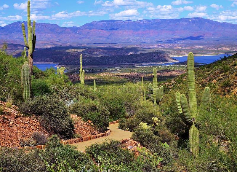 Woestijnweg die aan een oude klippenwoning leiden stock foto