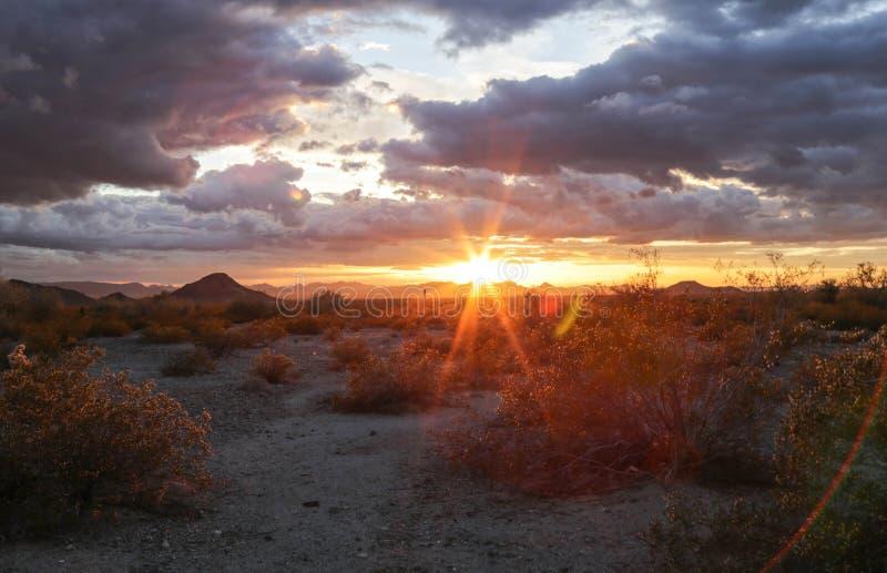 Woestijnzonsondergang in Arizona stock afbeeldingen