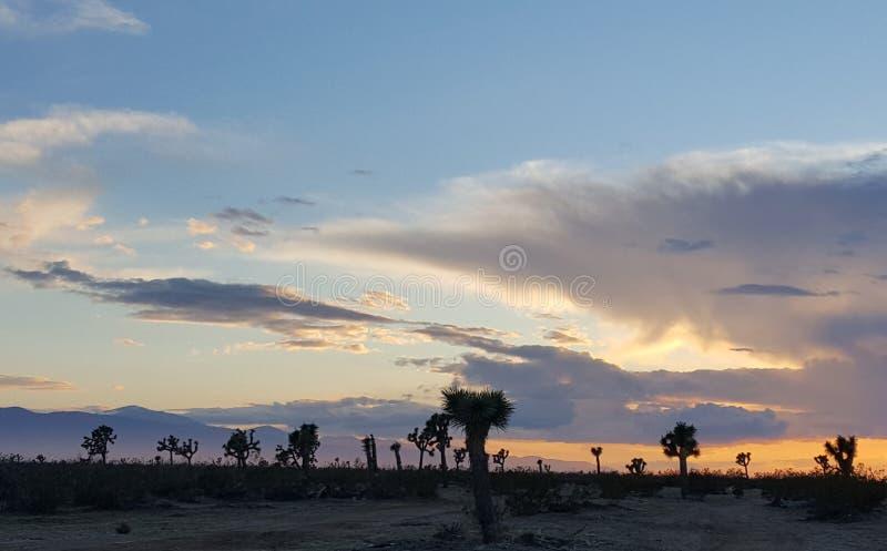 Woestijnzonsondergang met wolken stock foto