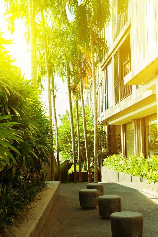Wohnblock in der Luxusart und in den hohen Palmen lizenzfreie stockfotografie