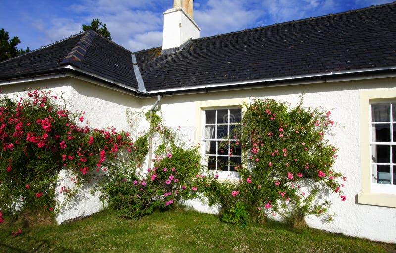 Wohnhaus und Garten stockfotos