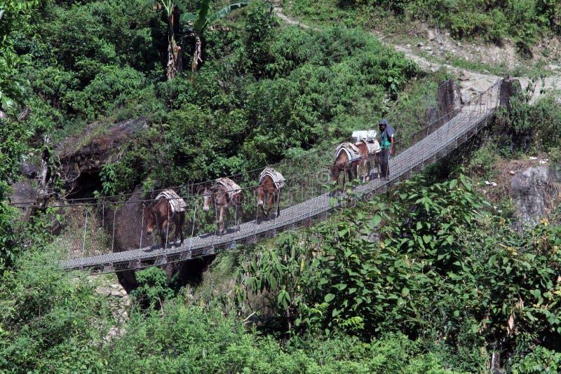 Wohnwagen auf der Brücke lizenzfreies stockfoto