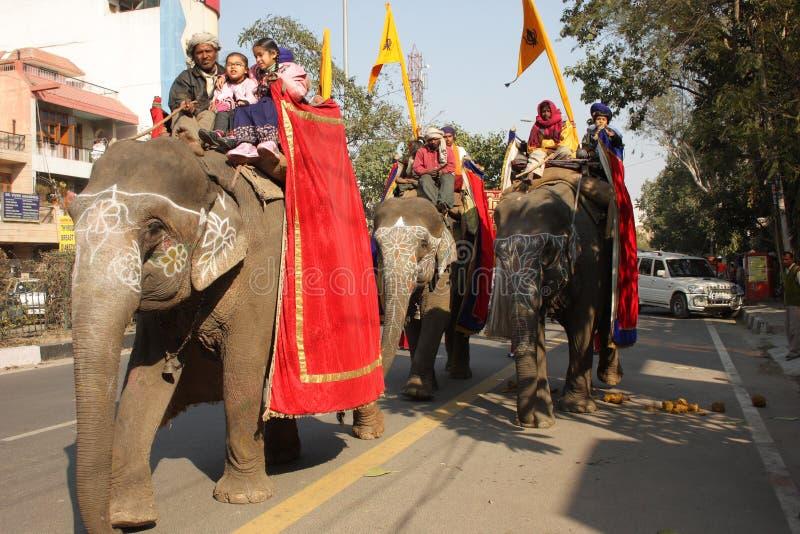 Wohnwagen der Elefanten stockfotos