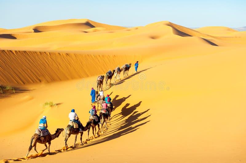 Wohnwagen mit Beduinen und Kamelen in den Sanddünen in der Wüste an den Sonnen lizenzfreies stockbild