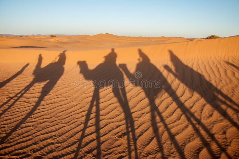 Wohnwagenschatten, Hamada du Draa (Marokko) stockfotos