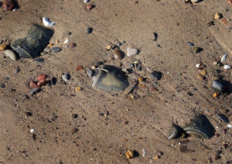 Wojny Światowa dwa uzbrojenia na wschodnim wybrzeżu wyrzucać na brzeg w 2016 obrazy stock