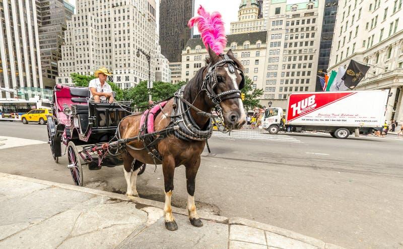 wojska uroczysty Manhattan plac fotografia royalty free