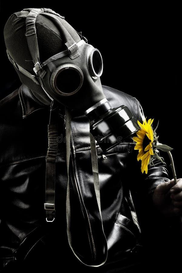 wojsko kwiat obrazy royalty free