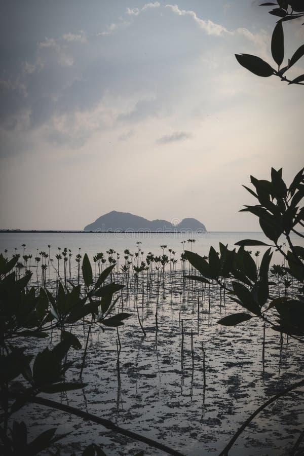 Wok Tum, Hin Kong, περιοχή παραλιών Plai Lem του υγρότοπου με το δάσος μαγγροβίων Koh στη ngan περιοχή ακροθαλασσιών νησιών Pha b στοκ εικόνες