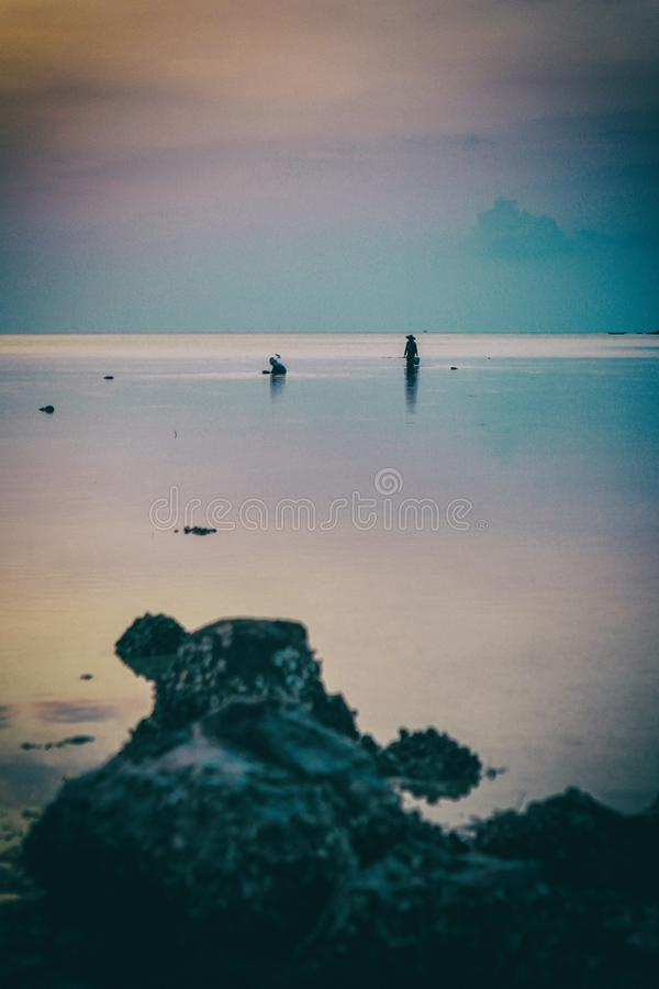 Wok Tum, Hin Kong, Plai Lem plaży bagna z namorzynowym lasem przy Koh Pha ngan wyspy dennego brzeg nabrzeżne terenem przy niskim  zdjęcie stock