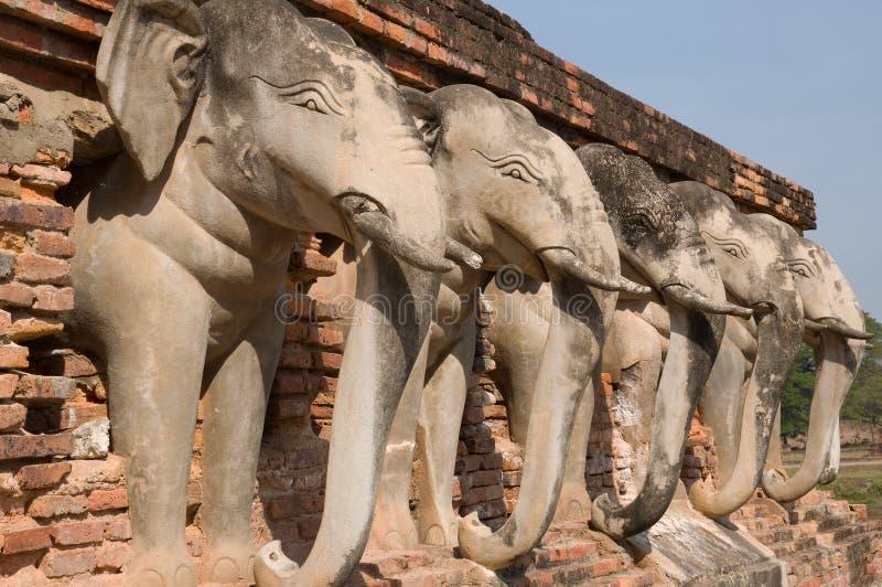 wokoło słonia pagody statuy zdjęcie royalty free