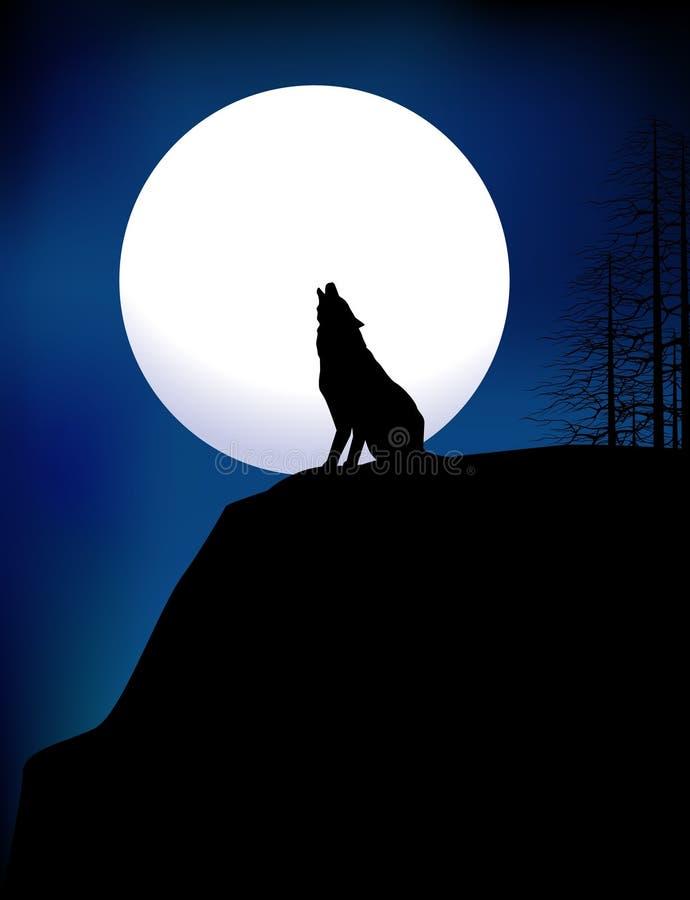 Download Wolf stock vector. Illustration of wildlife, wolf, wild - 11521733