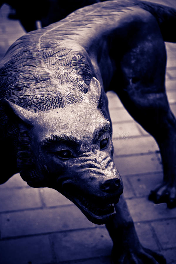 Download Wolf Stock Photography - Image: 18293962