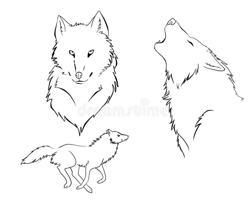 Download Wolf stock illustration. Image of wild, animal, black - 19193583