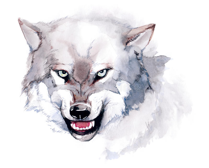 wolf stock illustrationer