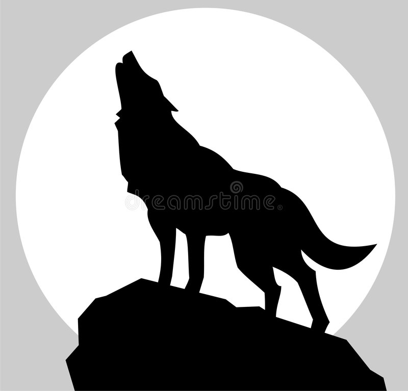 Wolf. On the moonlight silhouette