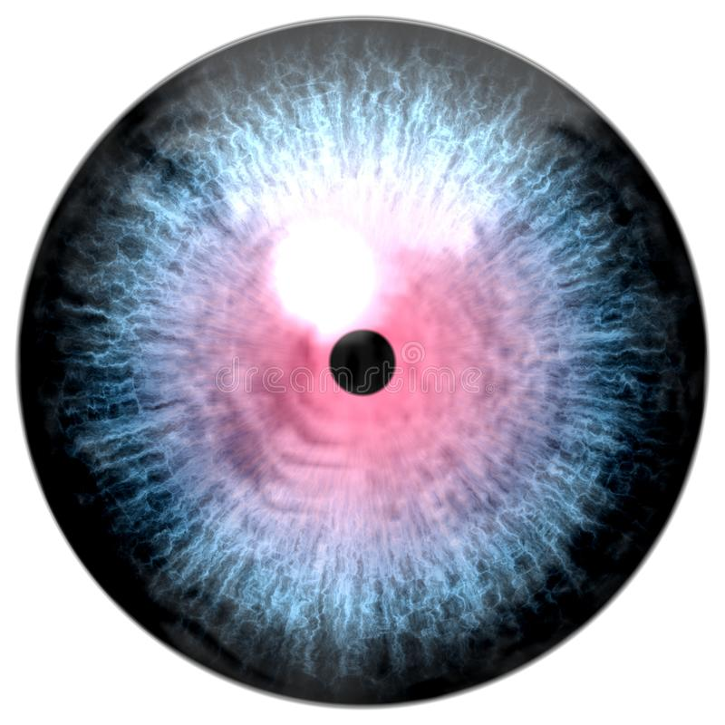 Wolf animal 3d eyeball texture royalty free illustration