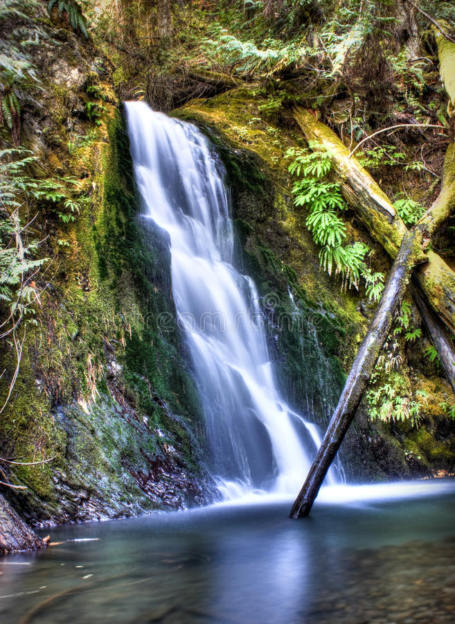 Download Wolf Creek Falls stock photo. Image of landscape, high - 11032652