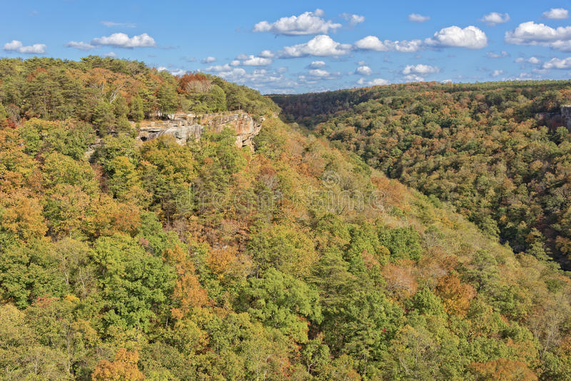 Wolf Creek Overlook In Alabama photographie stock libre de droits
